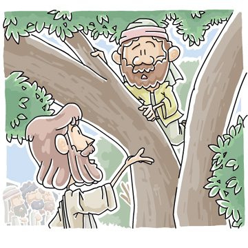 木に登ったザアカイ