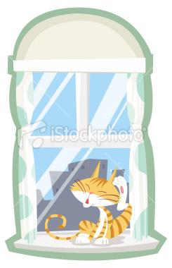 窓際で耳を掻くネコ