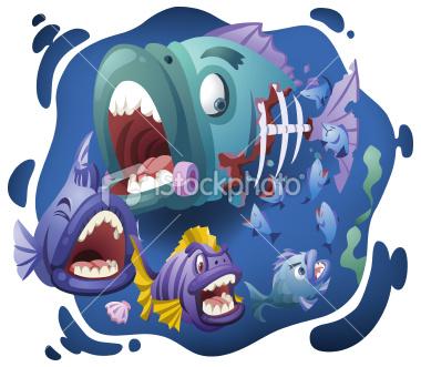 大きい魚が小さい魚を食べてる?
